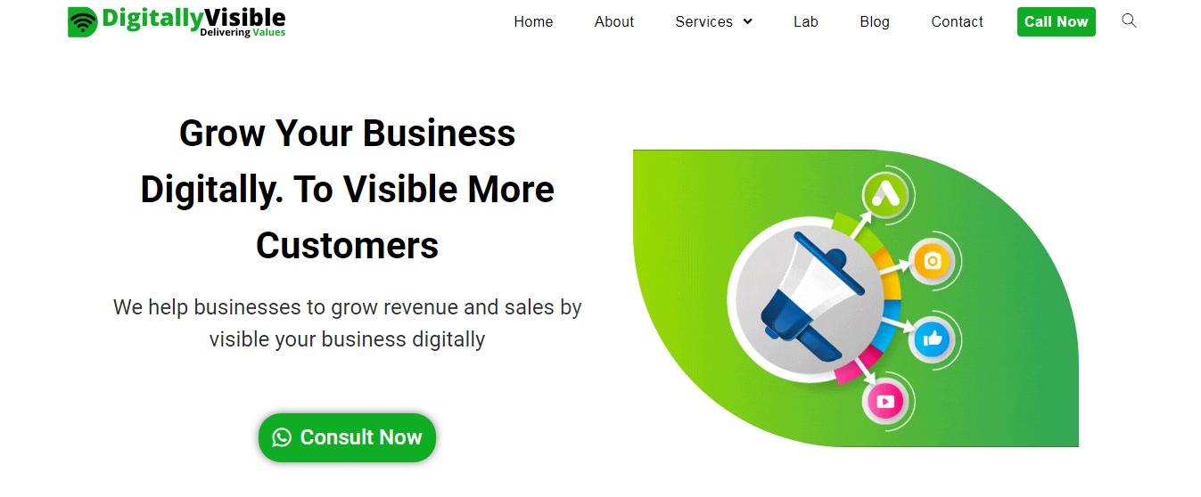 Screenshot Digitallyvisible.com Usability Marketing
